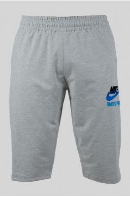 Бриджи Nike (z-0092-2)