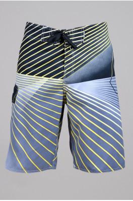 Пляжные шорты Quiksilver (12013)
