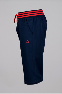 Бриджи Adidas. (3336-3)