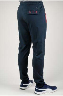 Cпортивные брюки Nike (2588-2)
